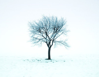 Winter time - minimalistic snow sqaures