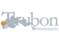 Trubon Weimaraners, Logo & Website Design