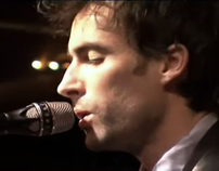 Andrew Bird Fitz and the Dizzyspells Music Video