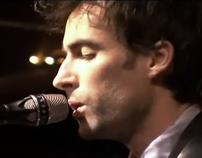 Andrew Bird Fitz and the Dizzyspells Music Video