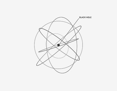 Black Hole Project