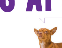 Westminster Dog Show Advertising Campaign