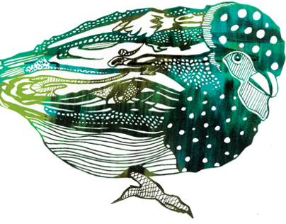 Patterned Bird Illustrations