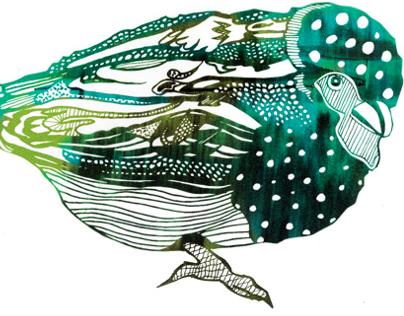 Patterned Bird Illustrations