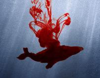 Anti-Whaling Poster