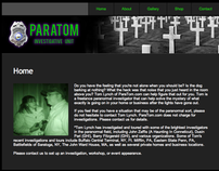 ParaTom: Website Revision 1