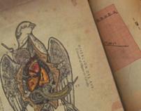 - about Birds - 2º