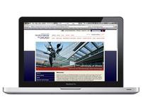 University of Illinois Hematology/Oncology Website