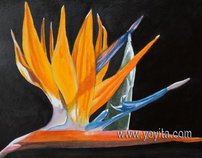 Bird of paradise flower, Strelitzia reginae watercolor