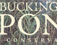 Buckingham Pond Conservancy