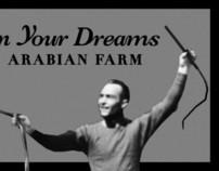 In Your Dreams Arabian Farm logo concept