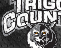 Trigg County Wildcats Athletic Logo Design