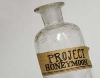 Project Honeymoon: journey + collaboration