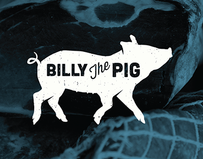 Billy The Pig Identity Exploration