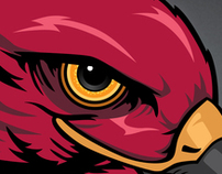 Eye of the Hawk redesign