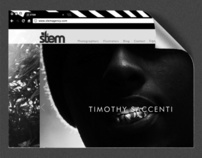 Stem Agency Website