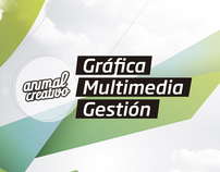Animal Creativo - Identidad