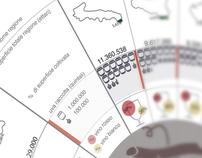 Infografica vino