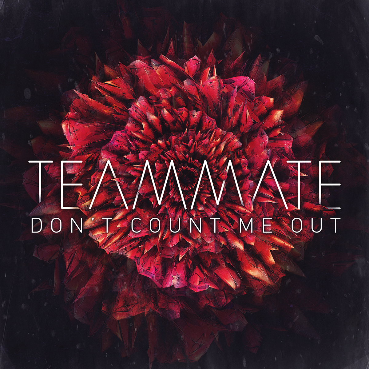 TEAMMATE - DONT COUNT ME OUT