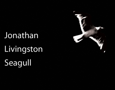 Jonathan Livingston Seagull - Audio Book