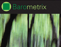 Identity for Barometrix Software Company