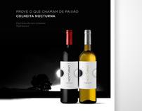 Ad Nocturno Wines