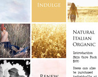 Otto Inc Website