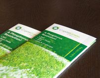 Crystal Green Generic Brochure