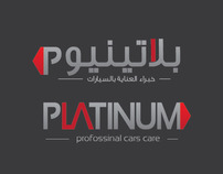 Platinum Car Polishing