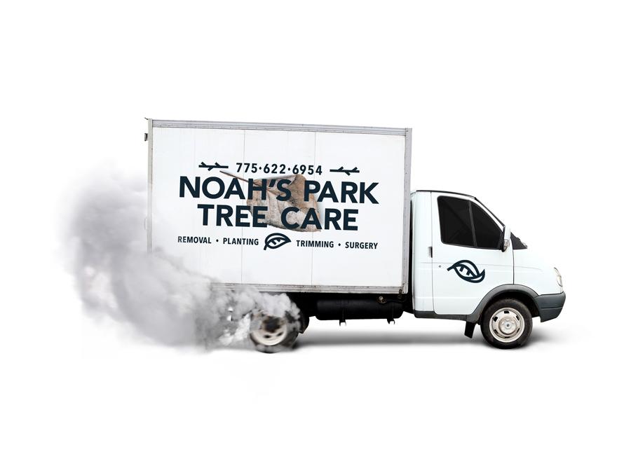 NOAH'S PARK TREE CARE