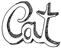 Cat Identity