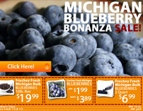 Ad Header Frucheys Blueberry Sale