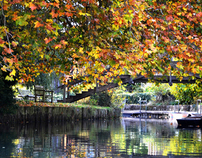River Cam - Cambridge, England