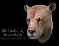 VXF 3D Texturing Show Reel - Lion and Fox.