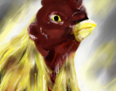Sabung Ayam Illustrations