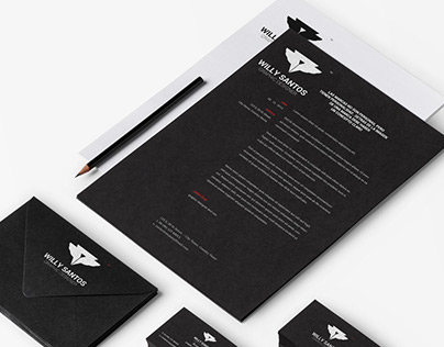 Personal Brand / Logo Willy Santos