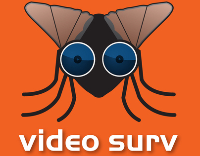 Video Surveyor