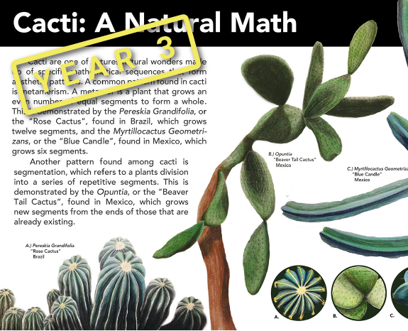 Cacti: A Natural Math