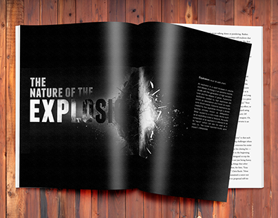 The Nature of the Explosion