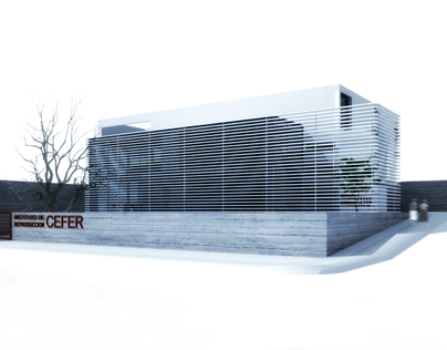 INSTITUT CEFER