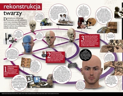 Infographics: Forensic science: Face reconstruction