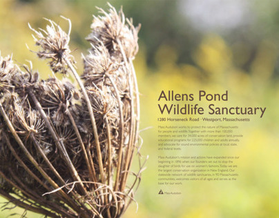 Allens Pond Wildlife Sanctuary