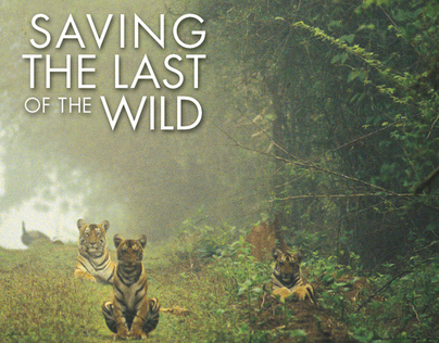 Saving the Last of the Wild Invitation