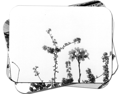 Black & White Postcards