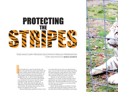 Detours Magazine Spreads: National Tiger Sanctuary