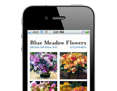 Blue Meadow Flowers: Website