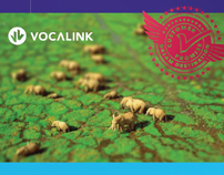 Vocalink staff sales incentive programme pitch
