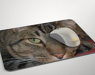 Mousepad/Mouse Mock-up