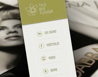 THE BIG FUSION - website