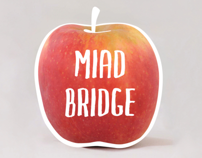 MIAD Bridge | Print Publication